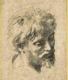 'Cabeza de un joven apóstol', dibujo de Rafael.