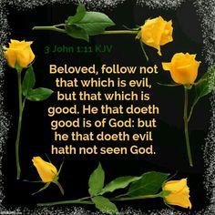 3 John 1:11 KJV