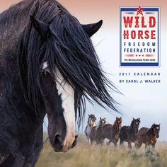 NEW! Wild Horse Freedom Federation 2017 Wild Horse Calendar  - 2017- McCullough Peaks Herd - Carol Walker - Wall Calendar - Wild Horse