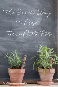 The easiest way to age terra cotta pots by Finding Home Farms