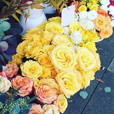 Yellow roses mean friendship  #roses #yellow #yellowroses #unionstreet #flowers #flowerstand #saturday #weekend #marina #cowhollow #city #sf #sanfran #sanfrancisco #sfblog #sfblogger #sfblogging #blog #blogger #blogging #lifestyle #decor #friendship #bouquet #happiness #fresh #nature #blooms #thebudstop