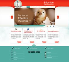 Sample Layout for professional design