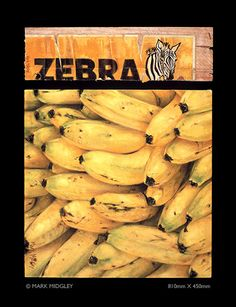 Zebra Banana Box