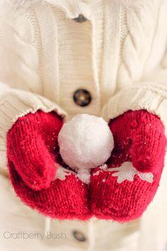 Craftberry Bush: How to make Indoor Snowballs