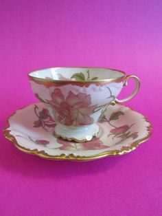 Vintage Rosenthal Selb 2 Piece Footed Teacup and Saucer Rigoletto Selb Germany Pompadour