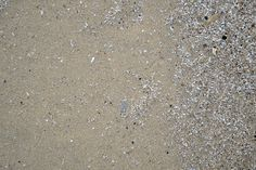 8 high-resolution Beach Sand textures captured along the Lake Erie shore at Sterling State Park in Michigan. You can tell that it is not as pristine a beach as elsewhere but when you're 600 miles f...