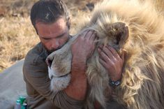 Kevin Richardson, lion whisperer