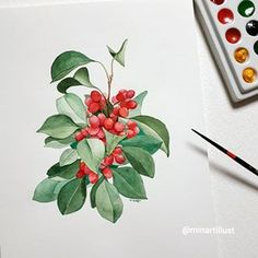 Illustrator Mina Park 🇰🇷 #미나뜨 (@minartillust) • รูปและวิดีโอ Instagram Watercolor Plants, Watercolor And Ink, Watercolour Painting, Watercolors, Water Drawing, Leaf Wall Art, Painting Still Life, Plant Illustration, Watercolour Tutorials