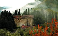Castello Di Trebbio in Tuscany, unforgettable! Beautiful castle and winery, the wine is fabulous