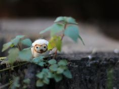 One of a kind barn owl soft sculpture entirely handmade, with the needle felting technique.    This little cute friend is tall just 2 cm (0.8
