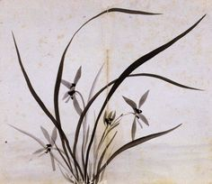 (Korea) Orchids by Gang Se-hwang (1713- 1791). color on paper. ca 18th century CE. Yeongnam University Museum.