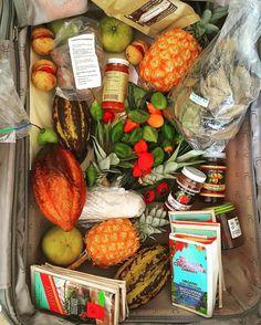 My Grenadian suitcase: fresh tamarind seasoning peppers pineapples cacao pods chocolategospo fruit nutmeg fruit cinnamon leaves pepper jelly nutmeg syrup rumcoffee cinnamon bark okra seeds pineapple plants #food #travel #grenada #caribbean #unpacking #secretgardenclub #shopping #packing #supperclub #globalgarden
