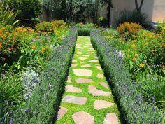Jardin de Flores : Jardins modernos por Terra