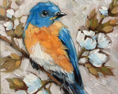 """Bluebird painting, Original oil painting of a Bluebird on a branch with white flowers 6x6"""" on panel, *Pre-Order"""