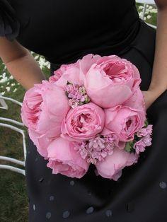 Wedding Bouquet of Miranda Garden roses and Bouvardia, by Carolyn Valenti