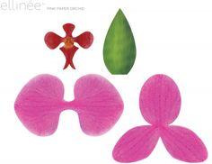 Мобильный LiveInternet Орхидея из бумаги для украшения подарков. Готовые шаблоны | голубая_незабудка - Дневник голубой_незабудки |