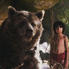 #Disneyparks have announced that from March 18th guests visiting Walt Disney Worlds #HollywoodStudios and Disneys #CaliforniaAdventure will be able to catch a sneak peek of the new live action version of the #junglebook  There will have a special introduction by Director Jon Favreau that pays homage to Walt Disney the original animated classic and Disneys legacy of innovative storytelling.  At Disney California Adventure park the preview of The Jungle Book will be presented at the Bugs Life…