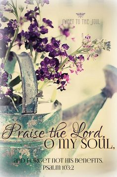 Psalm 103:2 KJV (Included vs. 1-3) Bless the LORD, O my soul: and all that is within me, bless his holy name. **Bless the LORD, O my soul, and forget not all his benefits:** Who forgiveth all thine iniquities; who healeth all thy diseases;