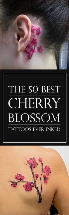 The 50 Best Cherry Blossom Tattoo Designs | TattooBlend