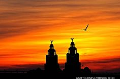 The Liverpool Echo photos of the year 2014 - an amazing gallery from the past 12 months Liverpool Poster, Liverpool Skyline, Liverpool History, Liverpool City, Liverpool England, Skyline Painting, Sunset Pictures, Local History, City Buildings
