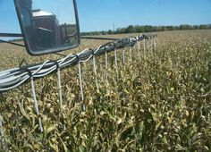 MillerNitro modification to seed cover crop into late season corn.    Equipment modfications and photo credit: Mike Shuter, Shuter Sunset Farms