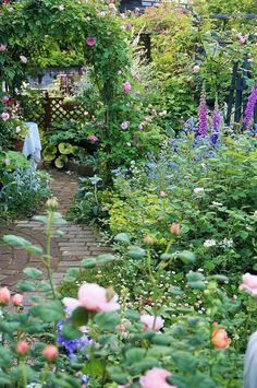 A winding path leads you through the arch covered with climbing roses
