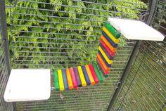 "Two 6x6"" shelves with log bridge/ramp rat,degus,chinchilla,chipmunk cage"