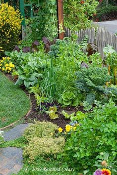 Love this...Beautiful edible garden that blends right into the landscape and helps fight pests. Why should a veggie garden be restricted to boring rows?