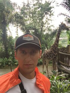 #Singapore #zoo #giraffe