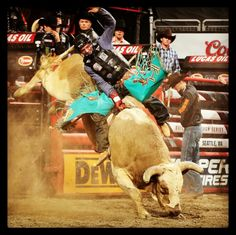 Congratulations Cooper Todd Davis on Winning ROUND 1 of #PBRSEA with an 89 point ride on Big Cool!  #PBR #BullRiding #RodeoChat #RodeoCowboy #PRCA #ProRodeo #UpAndComing #OneToWatchFor #DareToInspire #DareToBeDifferent