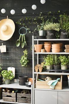 Inspiratieboost: de plantenkast is een perfecte toevoeging aan je tuin of balkon - Roomed