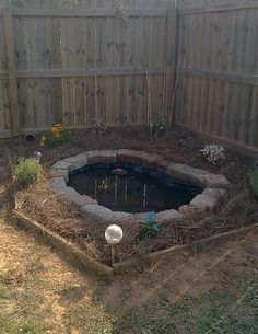 Frog ponds don't have to be big, you can have one in your own yard. Here is a photo of a lovely finished back yard frog pond.