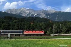 1144 005 am 20.08.2010 bei Terfens/Österreich