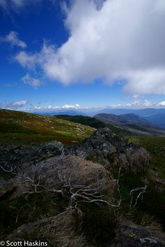 Alpine National Park, High Country Victoria, Australia. It was worth waiting for.