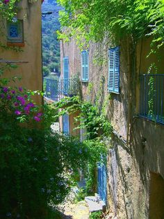 Blue Shutters, Corsica, France photo via wietzie