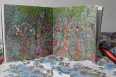 Floresta encantada meus desenhos coloridos.