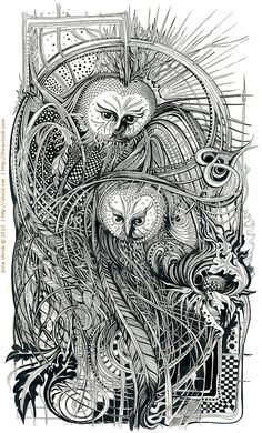 Owls by Irina Vinnik