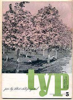 TYP. Ilustrovaný měsíčník pro úspěšné podnikání. Book Art, City Photo, Altered Book Art, Altered Books