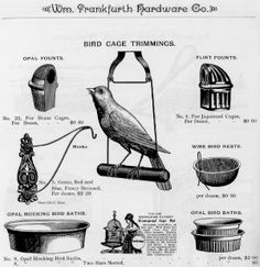 The bird in a classy victorian birdcage... birds == flight, freedom, perspective, migration or nomadism... but also has an elegant aesthetic. maybe it can be a bird with a classy victorian cigarette holder in its mouth, contemplating the universe...