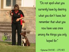 The Two Sides of Dog Training: The Right and the Wrong Way --SayYes! Dog Training by Susan Garrett