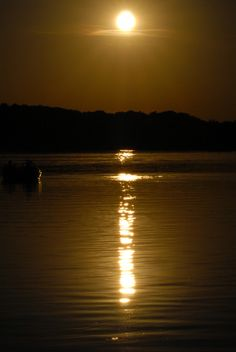 Sunset from Nature by Lafayette Wattles, via Behance