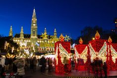 Christmas Market in front of Vienna City Hall Live For Yourself, Vienna, Christmas Lights, Dreaming Of You, World, Travel, Christmas Rope Lights, The World, Viajes