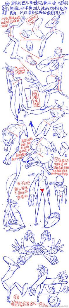 plastic anatomy                                                                                                                                                                                 Mais