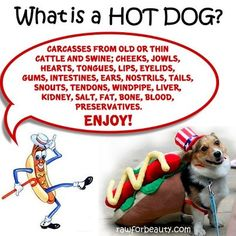 What is a HOT DOG?
