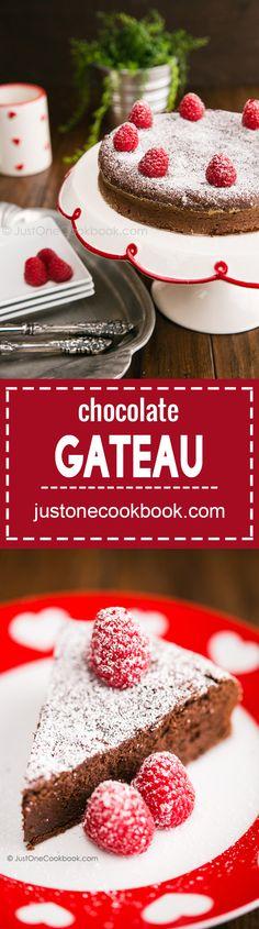 Chocolate Gateau (ガトーショコラ) | Easy Japanese Recipes at JustOneCookbook.com
