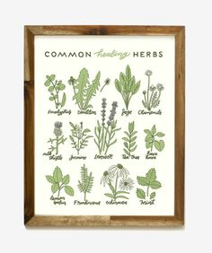 This charming print will remind you how powerful herbs can be.