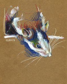 Watercolor pencils and paint markers on paperbord. #rat #art By Nuance (http://nuancescurieuses.tumblr.com/)