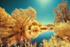 the yellow spring by david keochkerian.