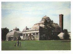 Botanical Gardens- South Buffalo