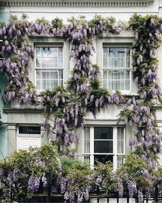 Weekend View and 5 charming paint color ideas for front door - Weekend View and. Weekend View and 5 charming paint color ideas for front door - Weekend View and 5 charming paint color ideas for front door – FRENCH COUNTRY COTTAGE - # How Beautiful, Beautiful Homes, Beautiful Places, Beautiful Pictures, London House, London City, Front Door Colors, French Country Cottage, Romantic Homes